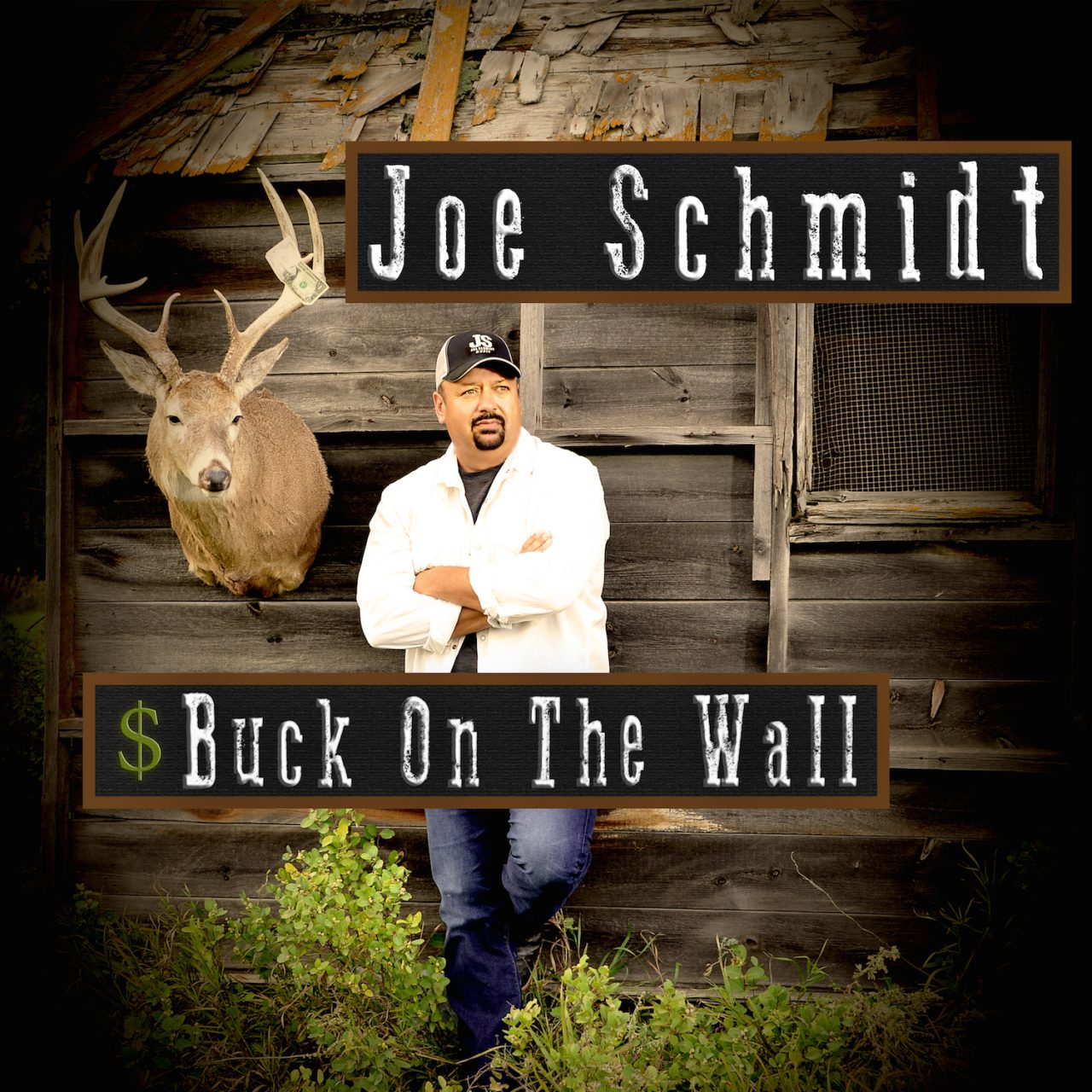 Joe Schmidt - Buck On The Wall